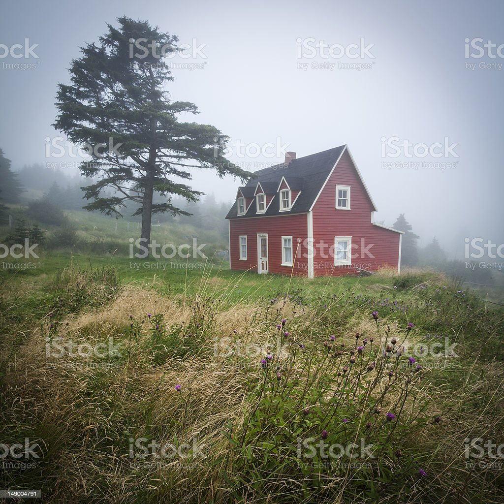 Red House and Tree in Fog stock photo