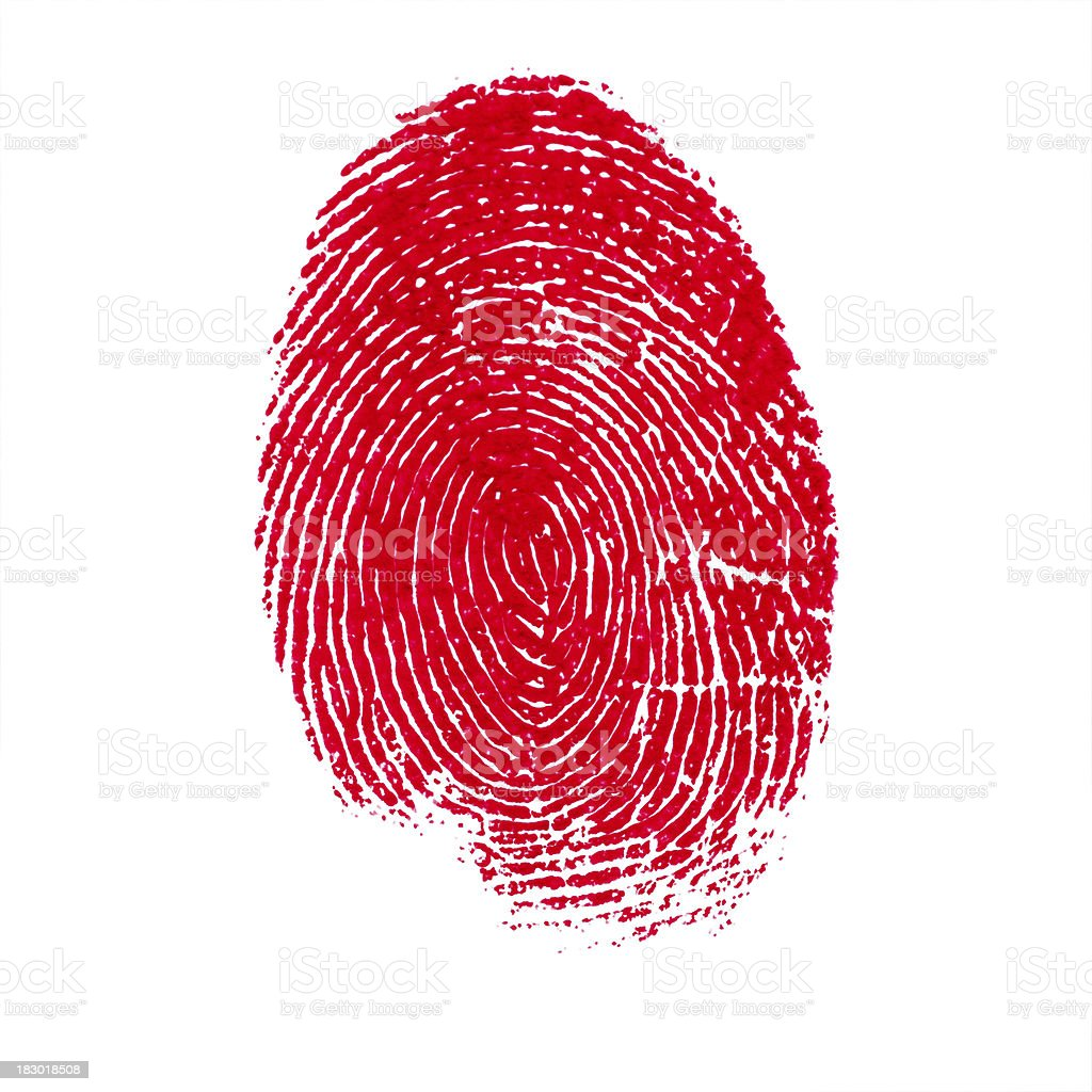 Red Isolated Fingerprint On White Background stock photo