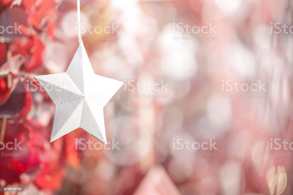 Red ivy Leaves, White Paper Star Christmas Decor stock photo