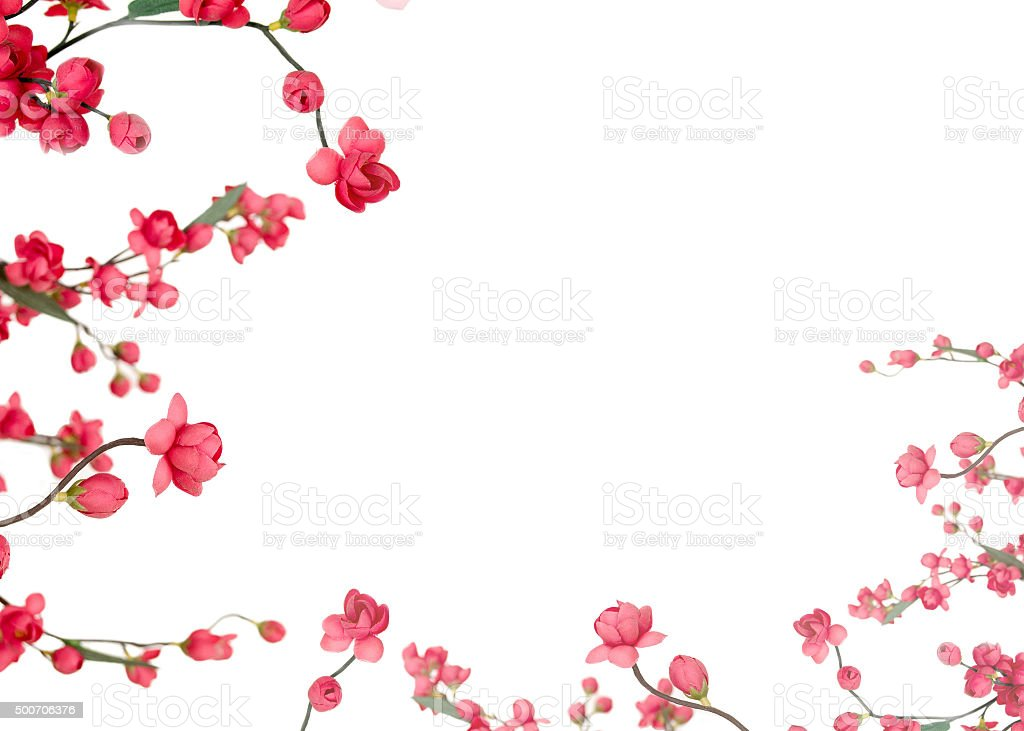 Red Japanese flowering cherry stock photo