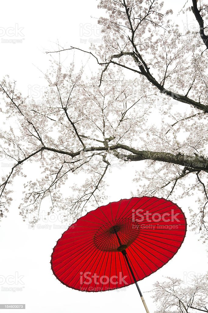 Red Japanese Umbrella royalty-free stock photo