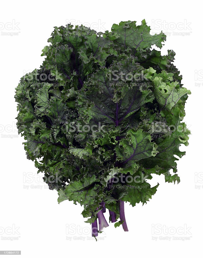 red kale stock photo