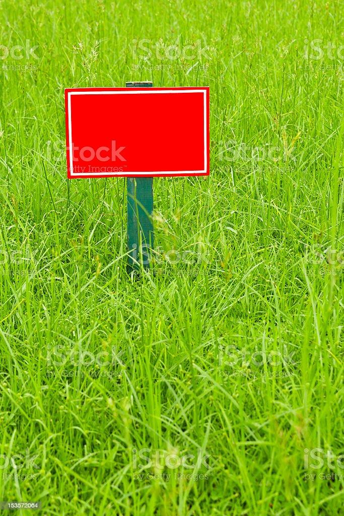 Etichetta rossa sull'erba foto stock royalty-free