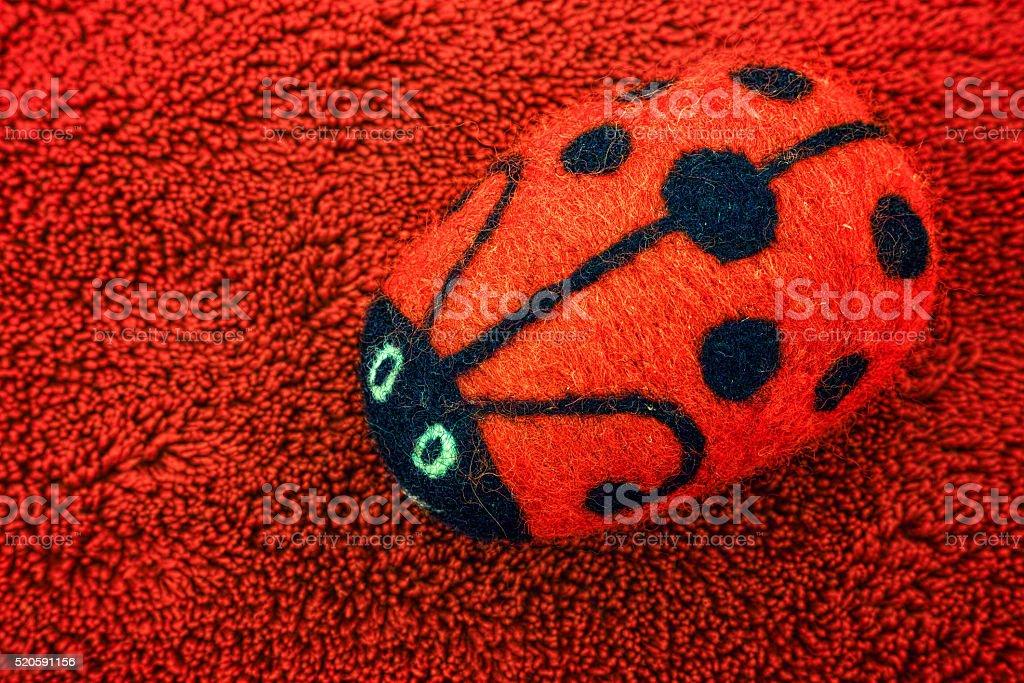 Red ladybug close-up royalty-free stock photo