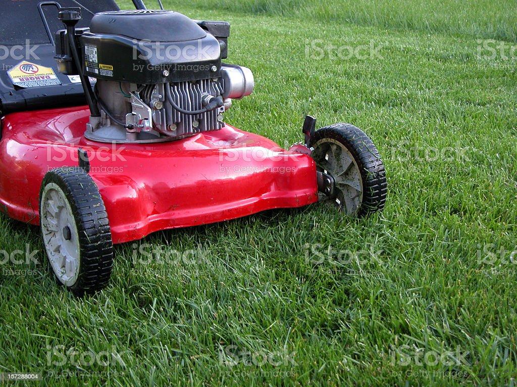 Red Lawn Mower & Fresh Cut Grass stock photo