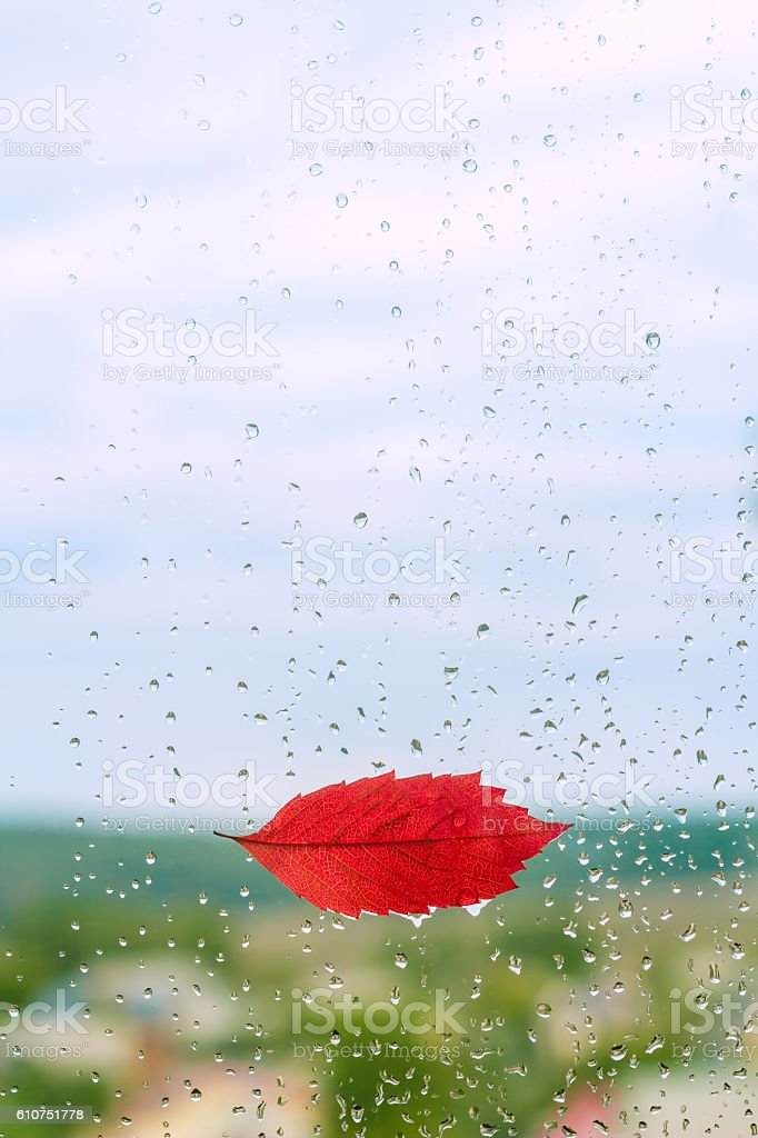 Red leaf lips on a window with raindrops stock photo
