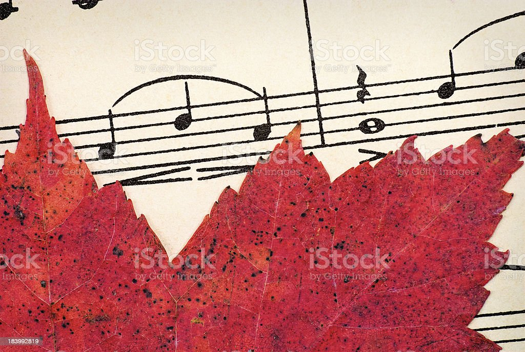 Red Leaf on Vintage Music royalty-free stock photo