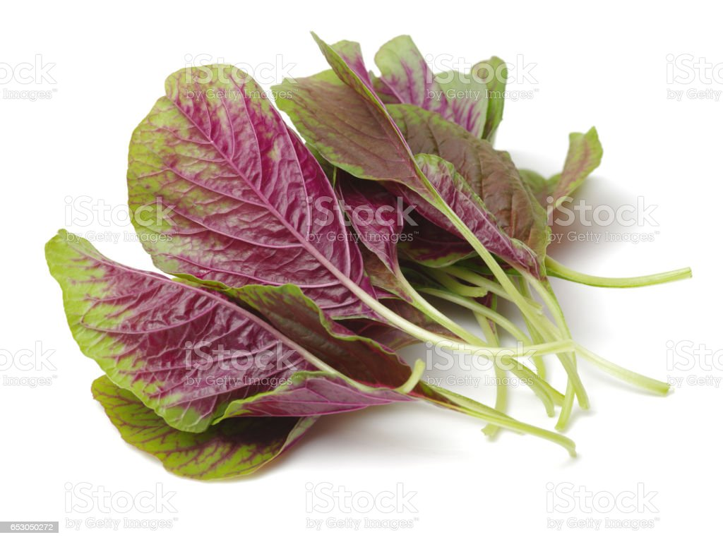 Red leaf vegetable Amaranth on white background stock photo