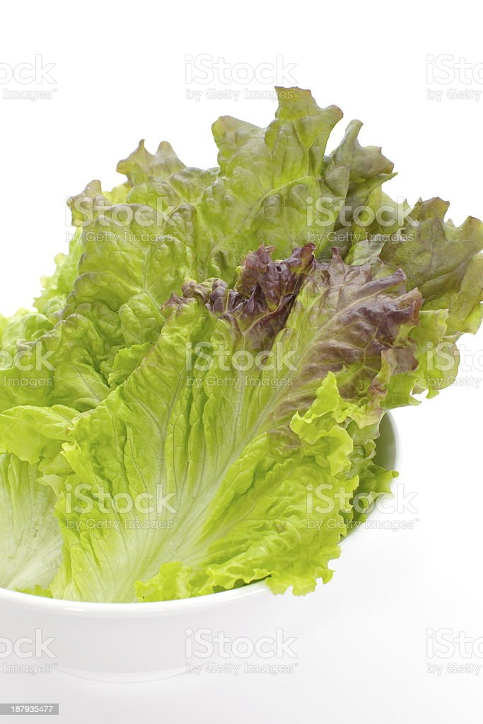 red lettuce isolated on white stock photo