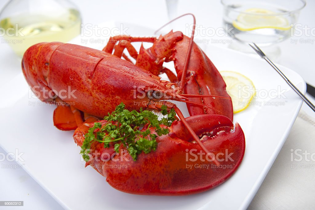 Red Lobster on A Plate royalty-free stock photo