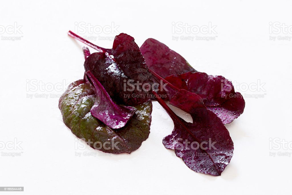 Red Mangold has leaves on a white background, selective focus. stock photo