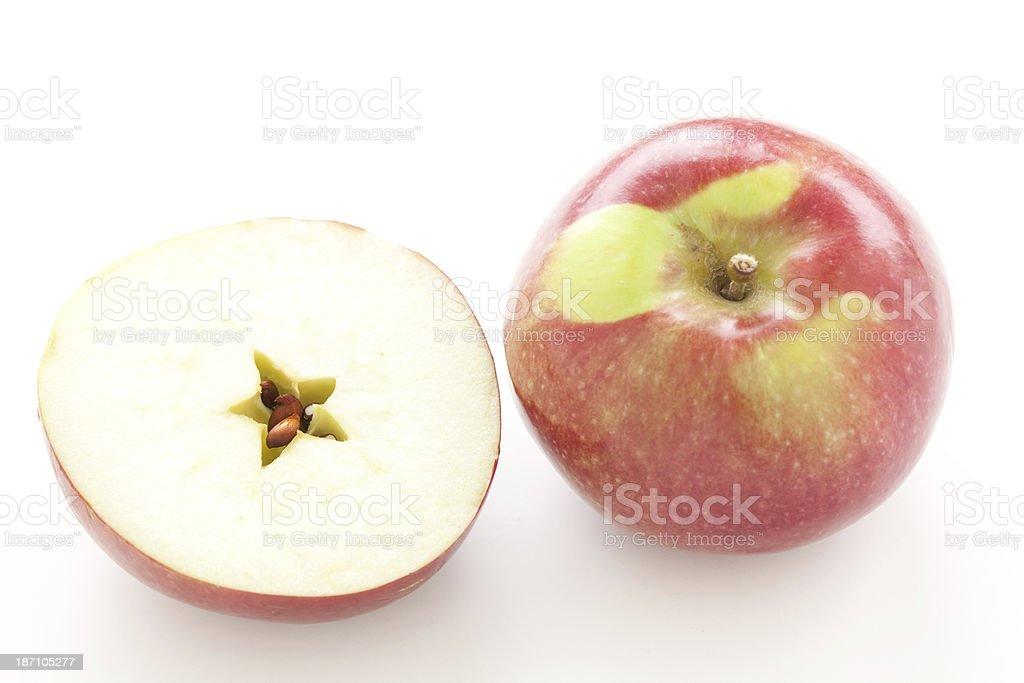 Red McIntosh apple stock photo