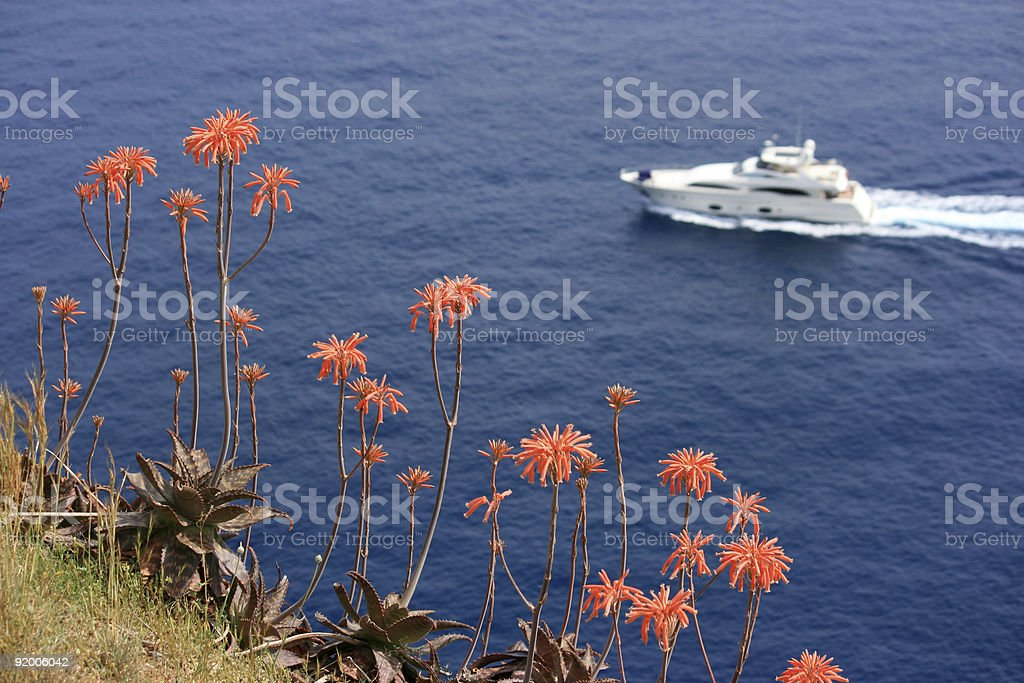 Red mediterian flowers and white yacht stock photo