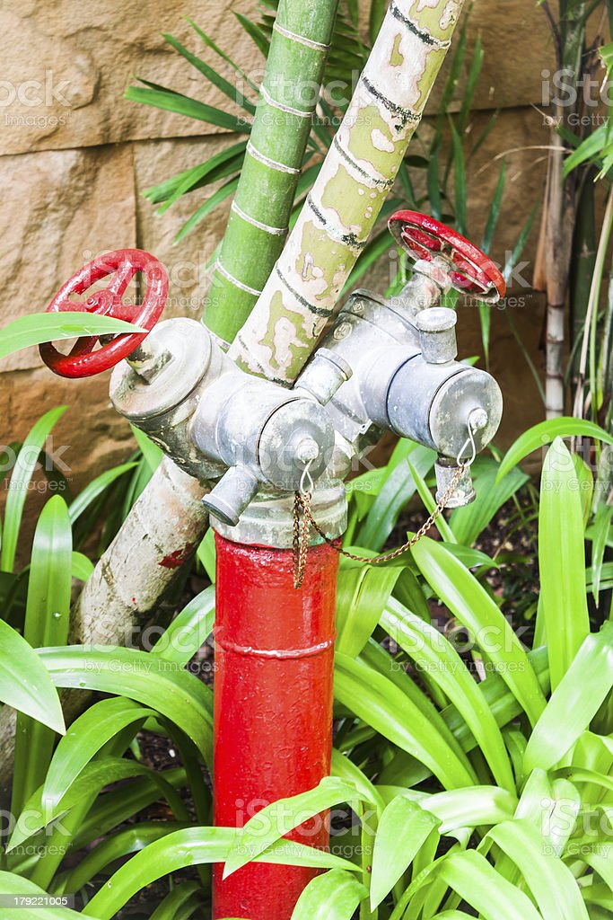 Red metallic fire hydrant in green resort royalty-free stock photo