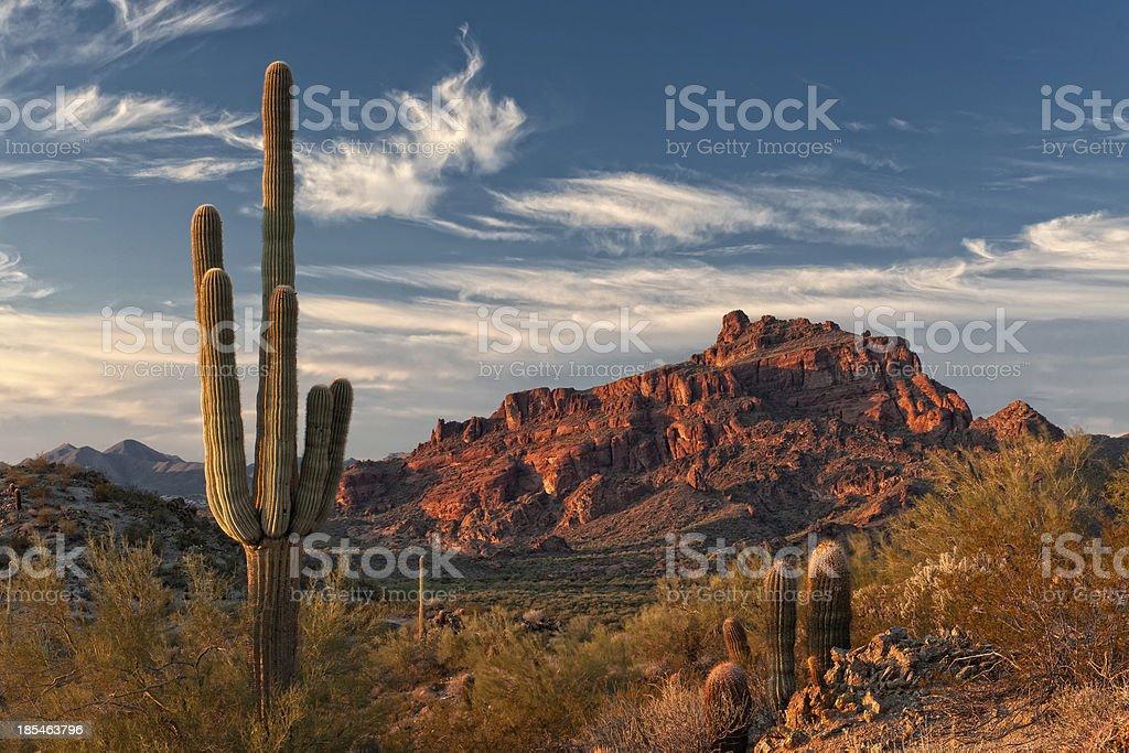 Red Mountain and Saguaro Cactus stock photo