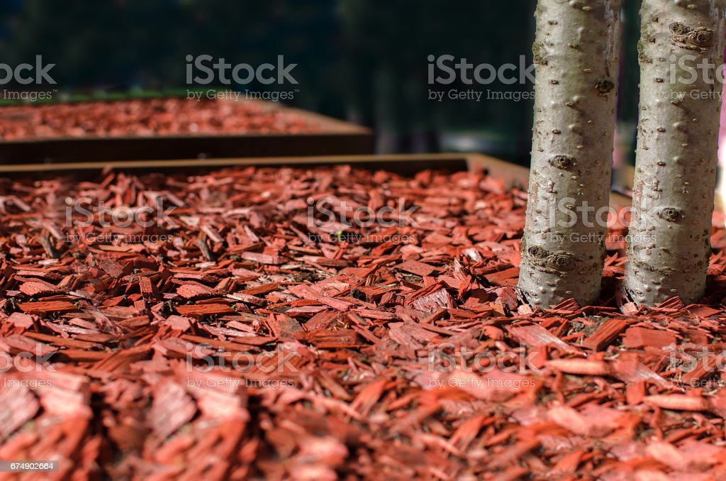 Red mulch used for garden decorating stock photo
