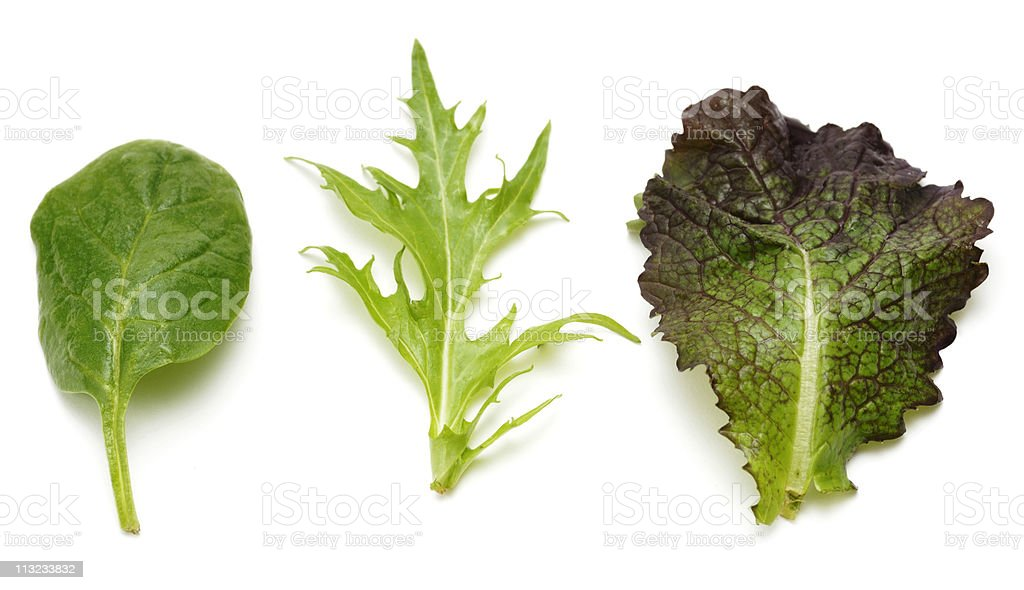 Red mustard, misuna and baby spinach salad leaves against white stock photo