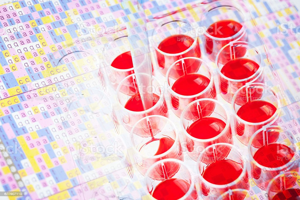 red nutritions for cell culture in wells stock photo