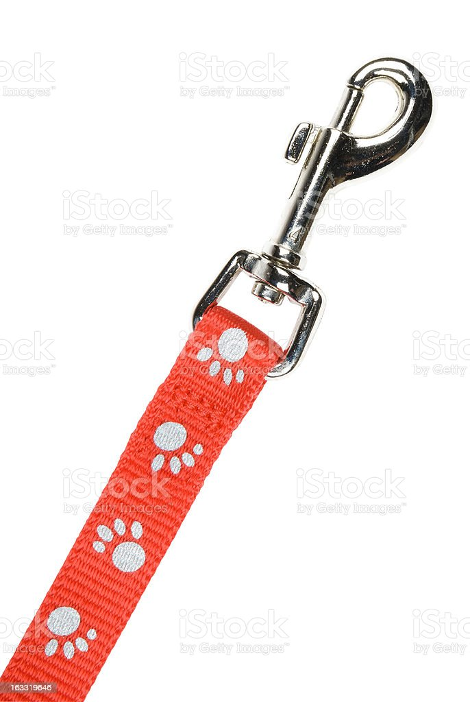 Red nylon dog lead or leash with paw print pattern. royalty-free stock photo