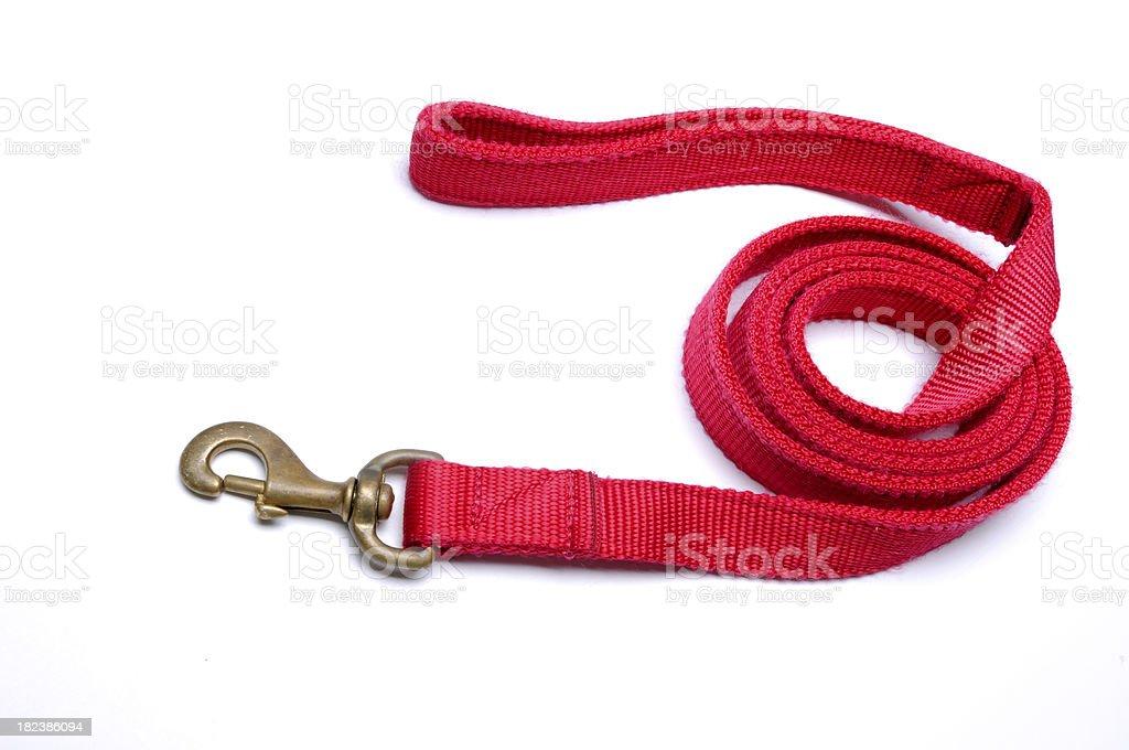 Red Nylon Leash stock photo