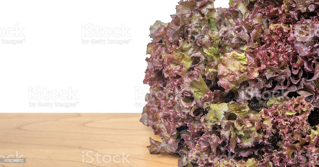 Red Oak Leaf lettuce isolated on wood table stock photo
