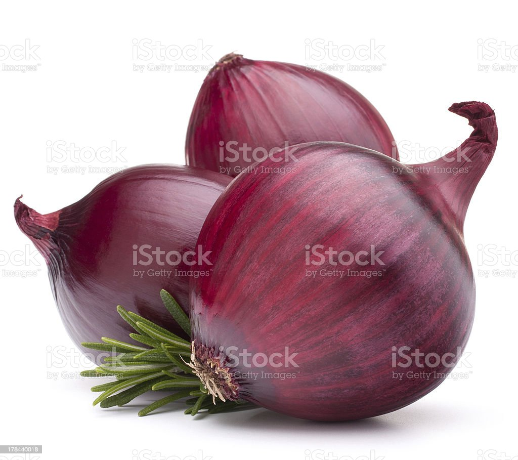 red onion bulb stock photo