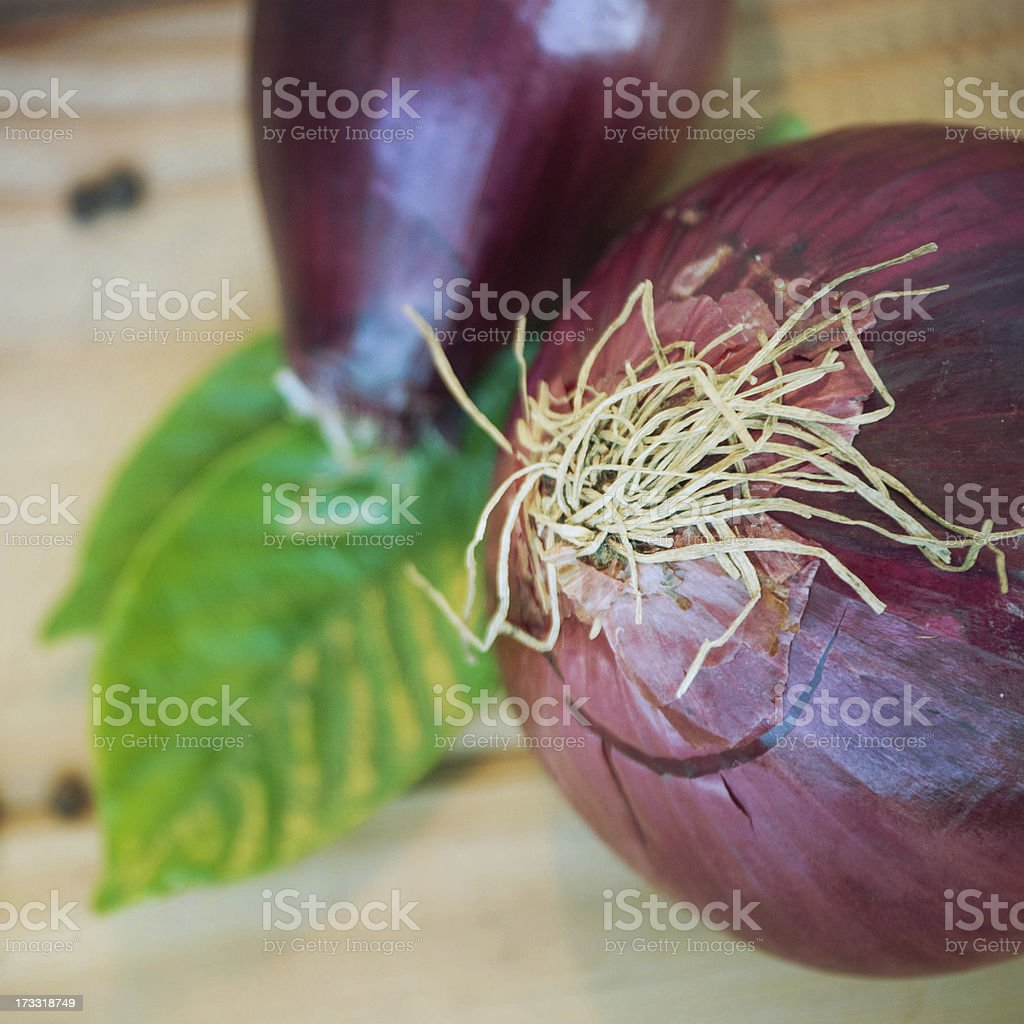 Red onion tuber royalty-free stock photo