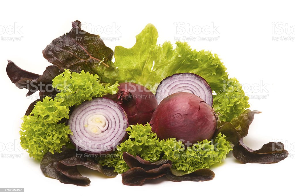 Red Onions an green salad stock photo