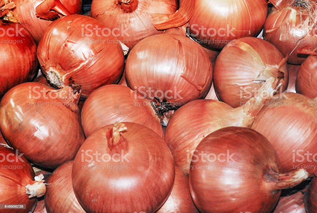 Red Onions for Sale stock photo