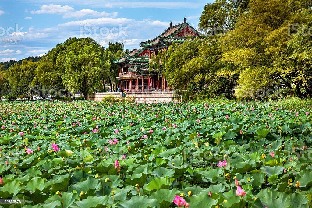 Red Pavilion Lotus Garden Summer Palace Park Beijing China stock photo
