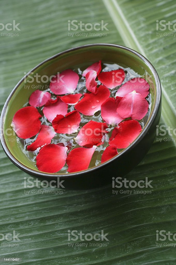 Red petals floating in green bowl royalty-free stock photo