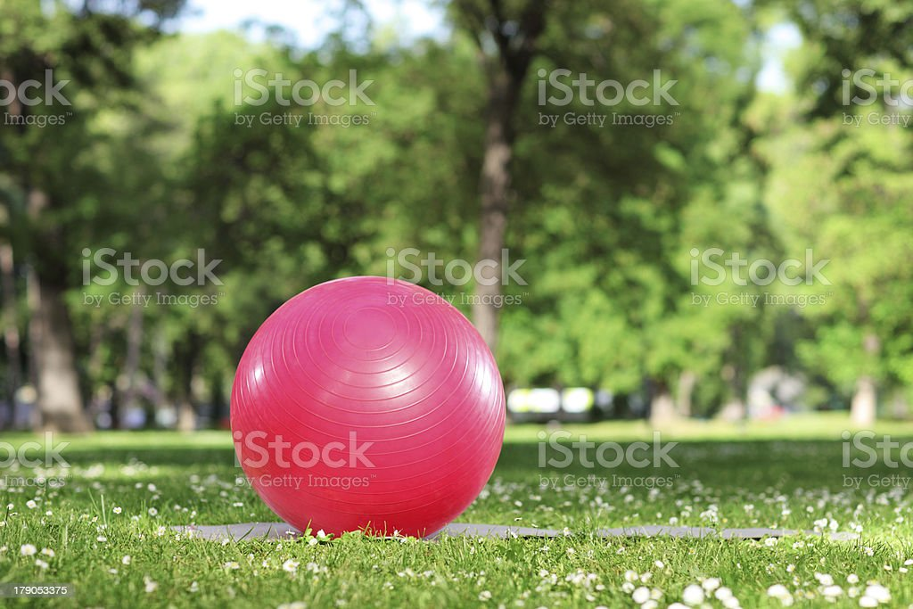 Red pilates ball on a grass in park royalty-free stock photo