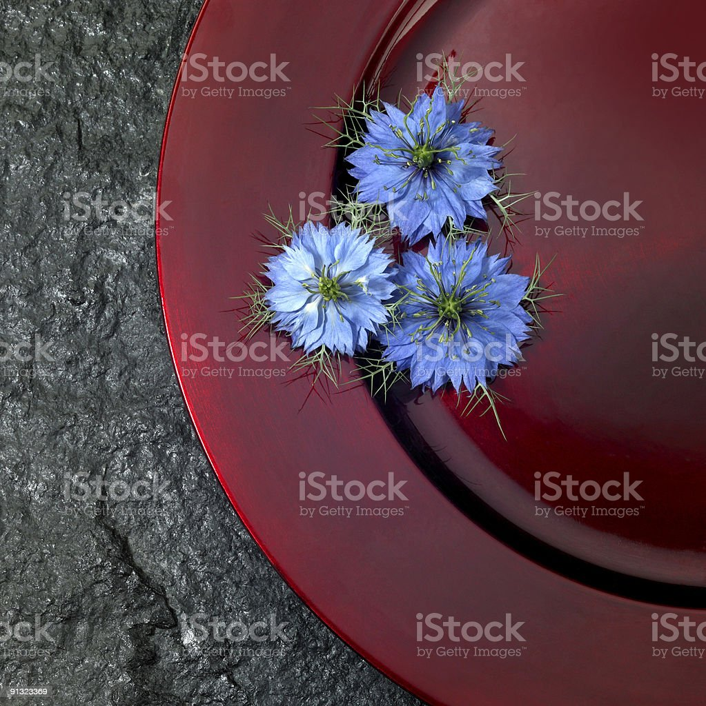 red plate and blue flowers royalty-free stock photo