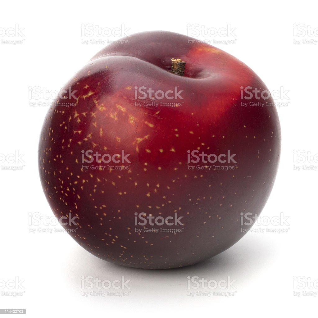 Red plum fruit royalty-free stock photo