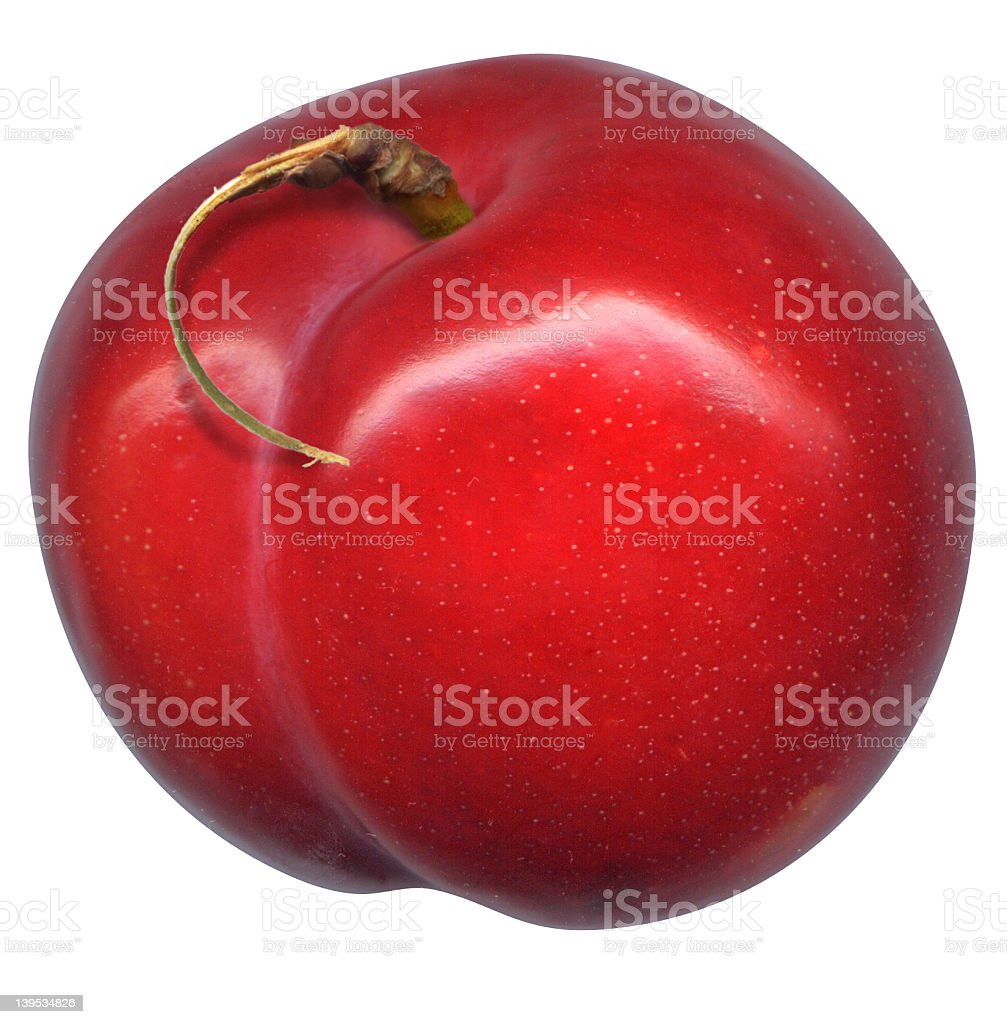 Red plum with stem royalty-free stock photo
