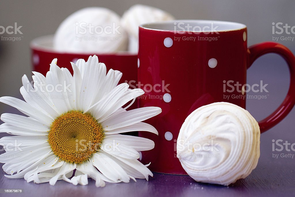 Red polka dot cup of tea royalty-free stock photo