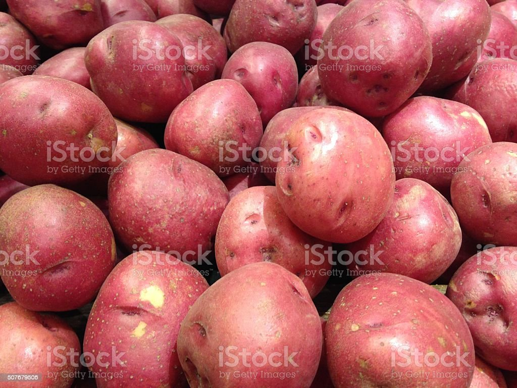 Red Pontiac Potatoes for Sale. stock photo
