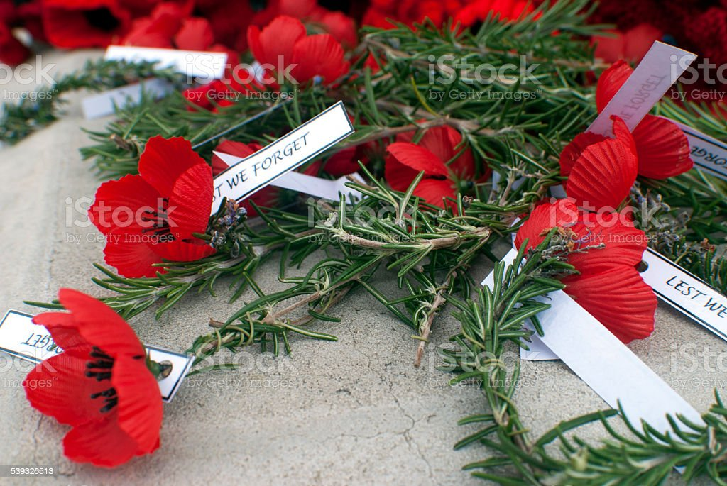 red poppies on anzac day stock photo