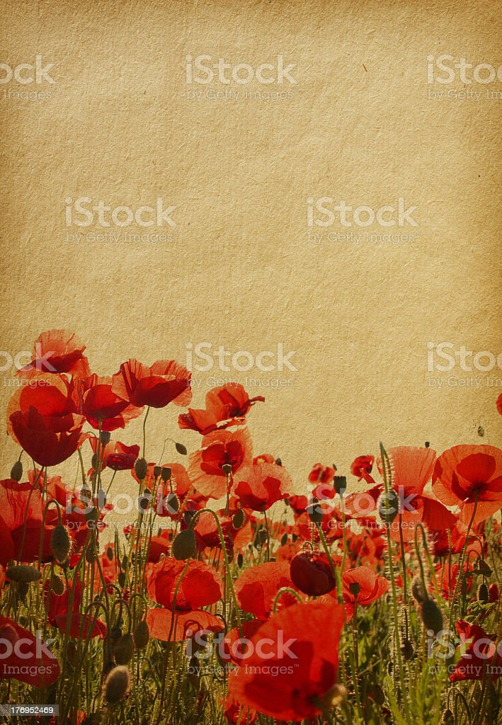 Red poppy flowers painting with textures royalty-free stock photo