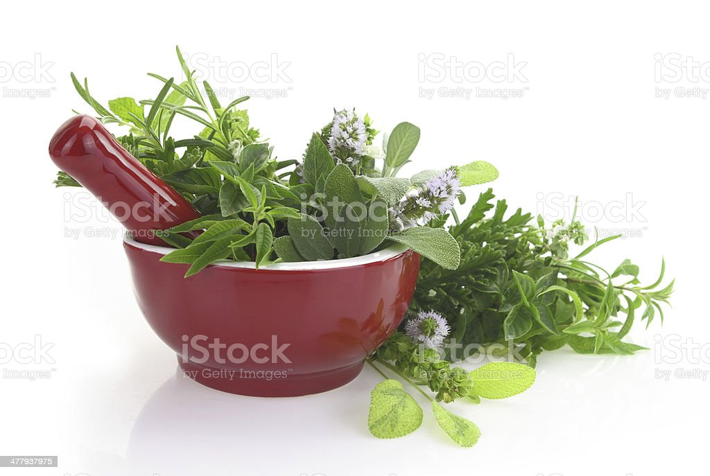 Red porcelain mortar and pestle with fresh herbs royalty-free stock photo