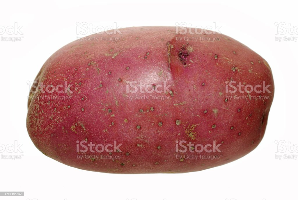 red potato stock photo