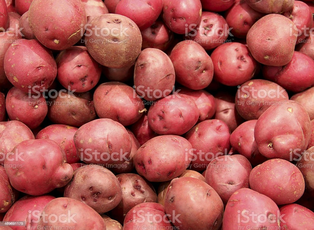 red potatoes background royalty-free stock photo