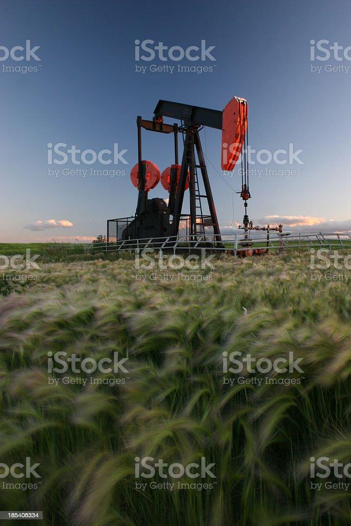 Red Pumpjack in Alberta Crude Oil Field stock photo