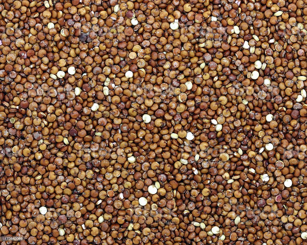 red quinoa stock photo
