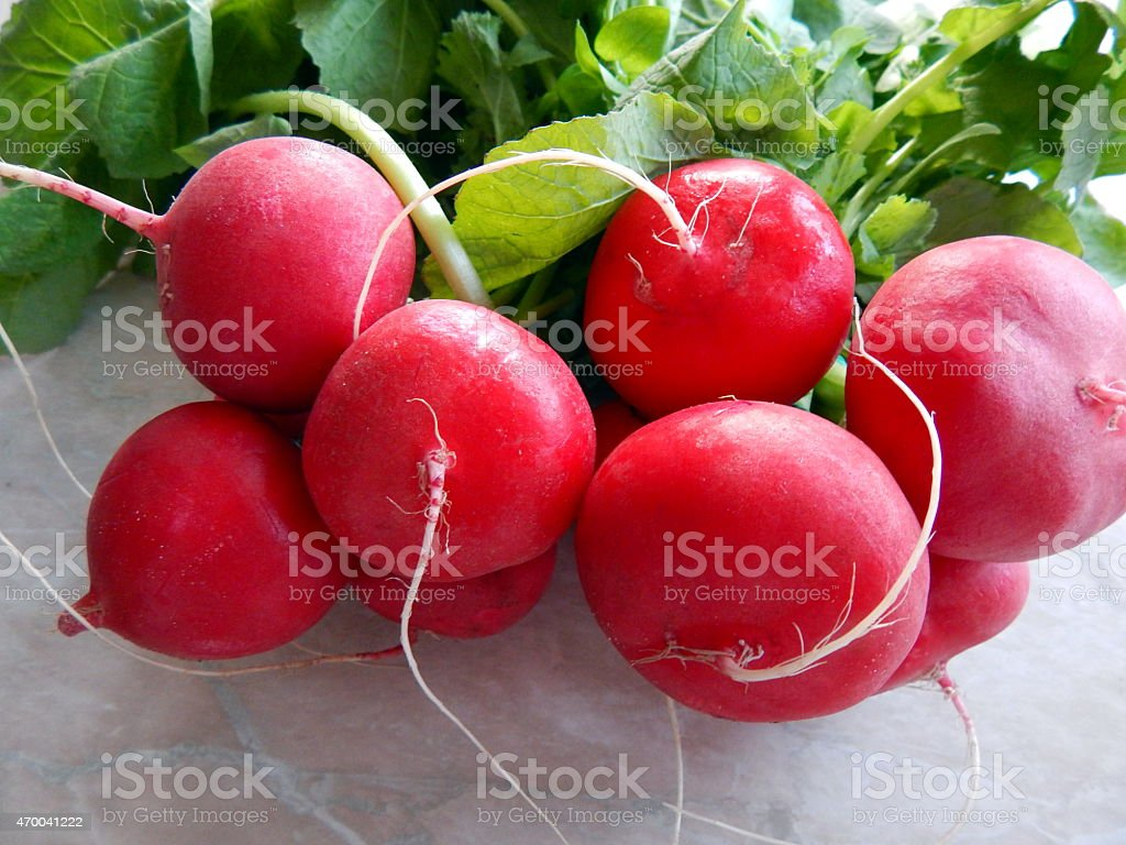 Red radish royalty-free stock photo