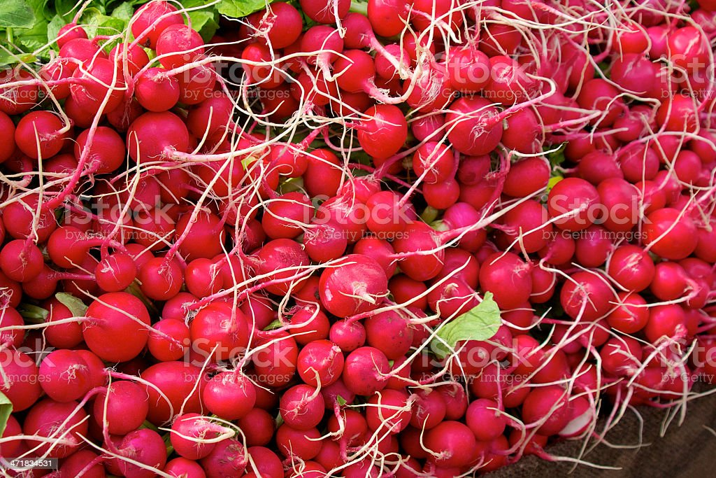 Red radish royalty-free stock photo