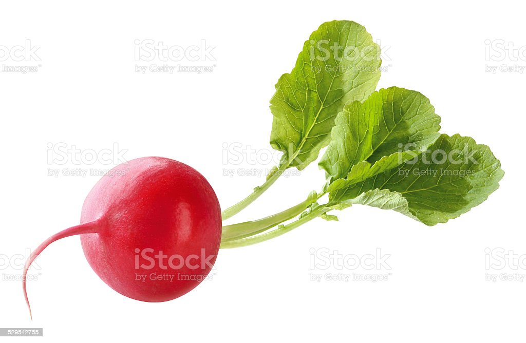 red radish with leaves stock photo