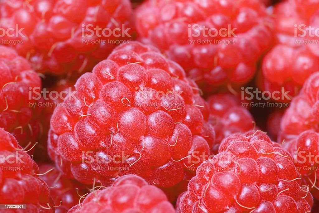 Red Raspberries Macro royalty-free stock photo