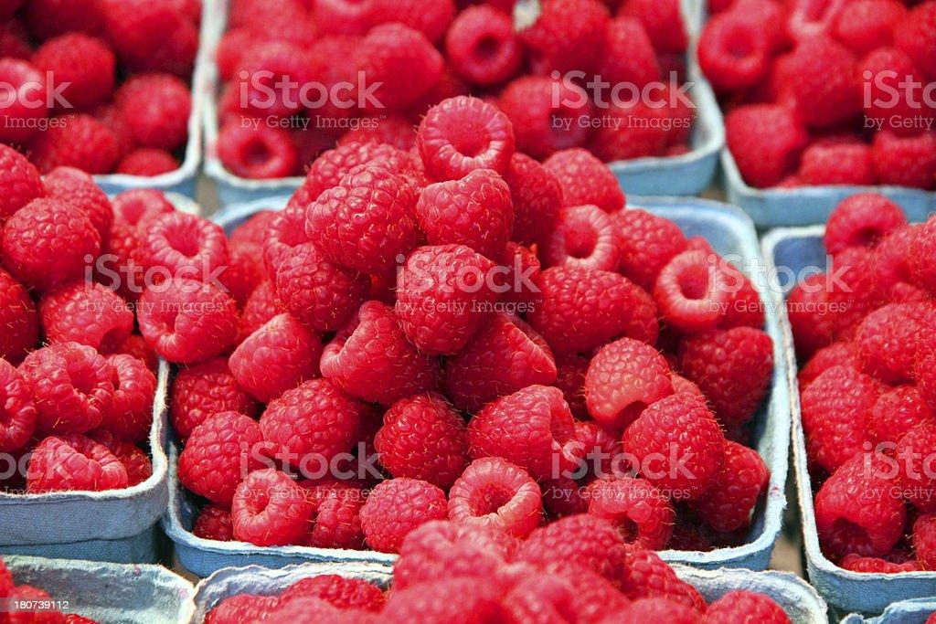 Red Raspberries royalty-free stock photo