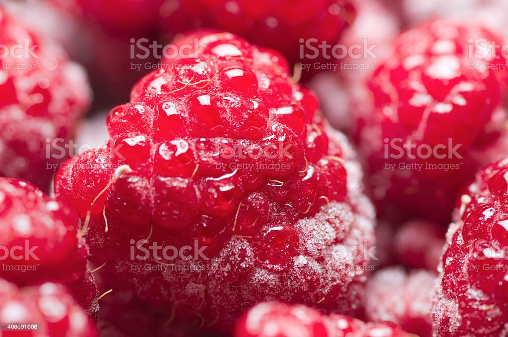 red raspberries stock photo